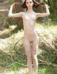 Stripped stake